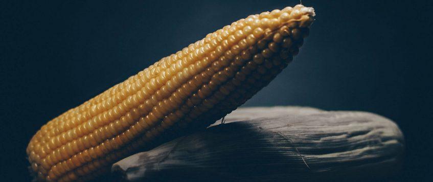 kukurydza-slider